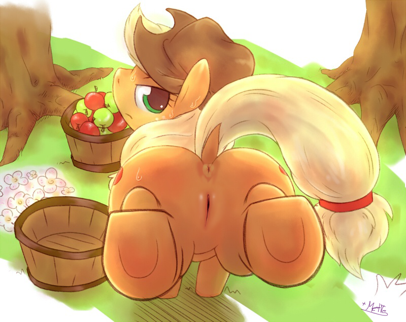 pony my apple little fritter Chip and dale rescue rangers queen bee