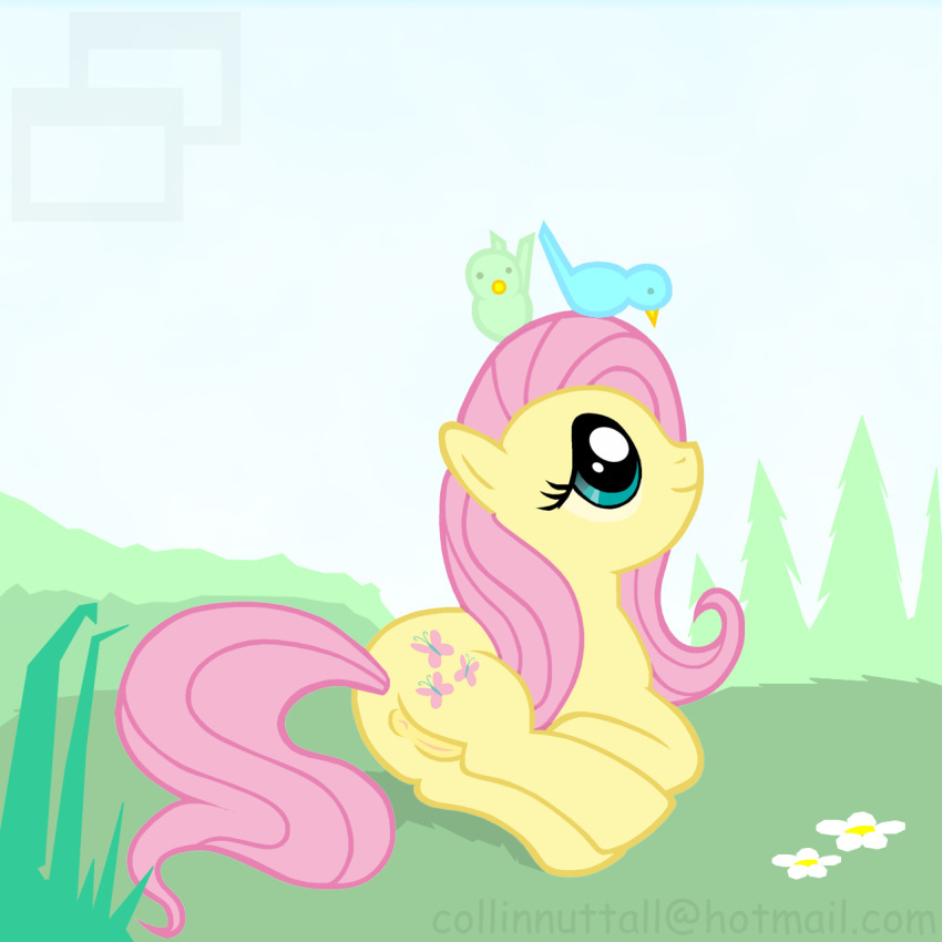 my fluttershy pictures pony little Stories the path of destinies zenobia
